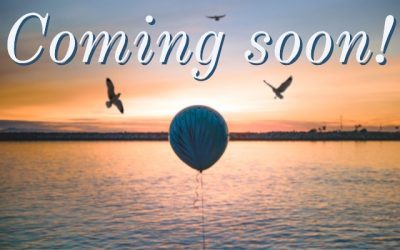 News and Information Coming Soon
